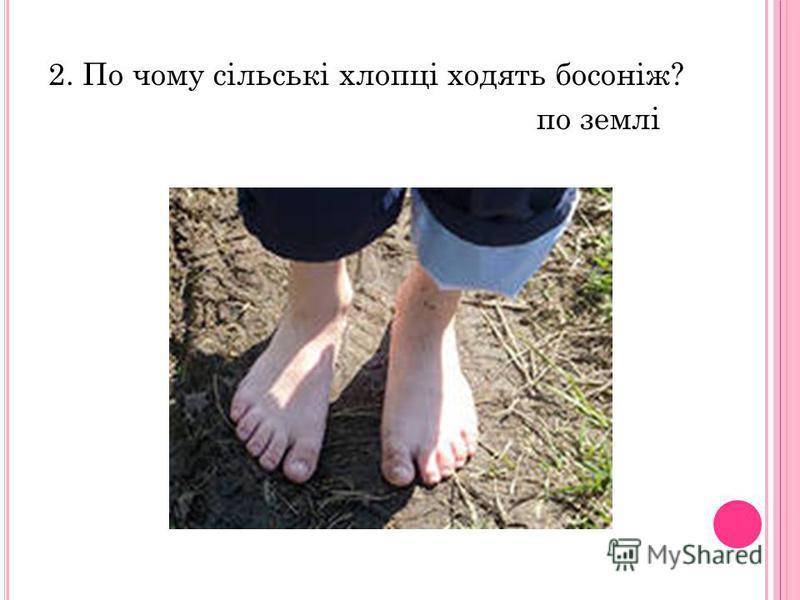2. По чому сільські хлопці ходять босоніж? по землі
