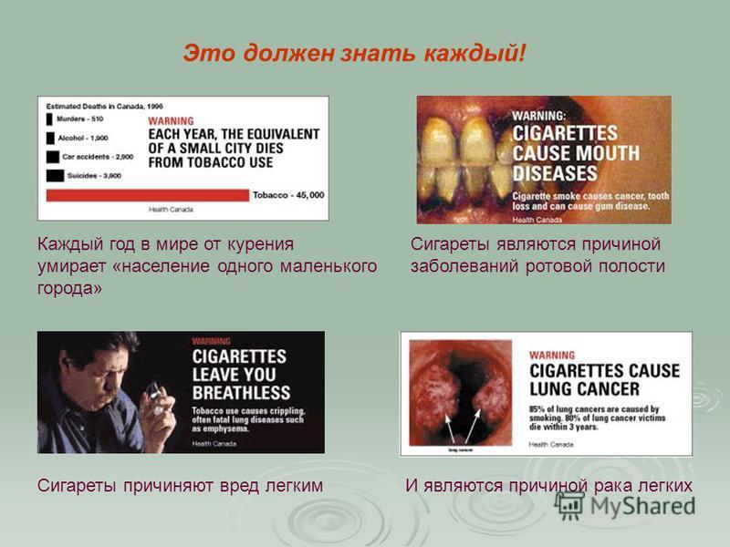 Это должен знать каждый! Каждый год в мире от курения умирает «население одного маленького города» Сигареты являются причиной заболеваний ротовой полости Сигареты причиняют вред легкимИ являются причиной рака легких