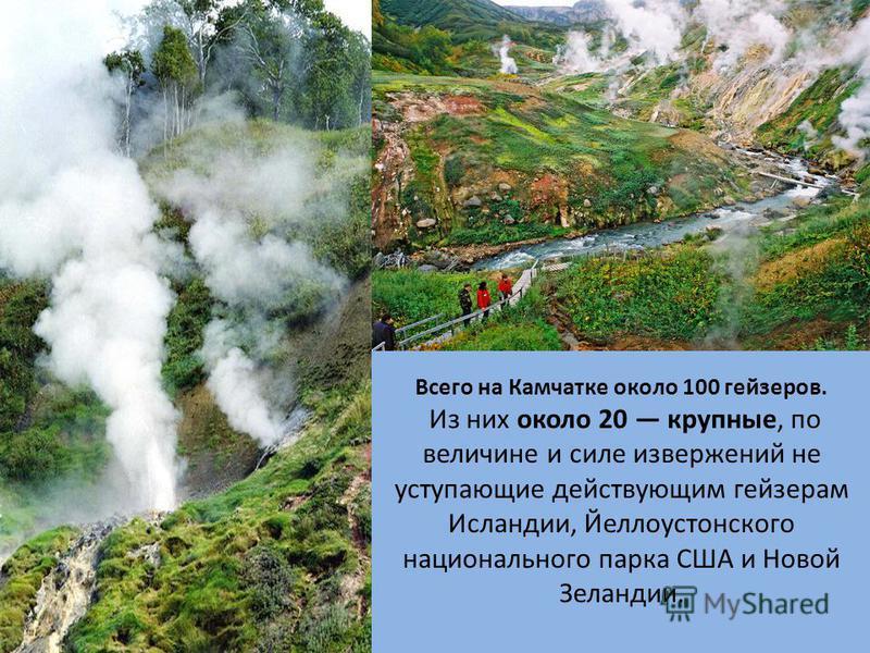 Всего на Камчатке около 100 гейзеров. Из них около 20 крупные, по величине и силе извержений не уступающие действующим гейзерам Исландии, Йеллоустонского национального парка США и Новой Зеландии.