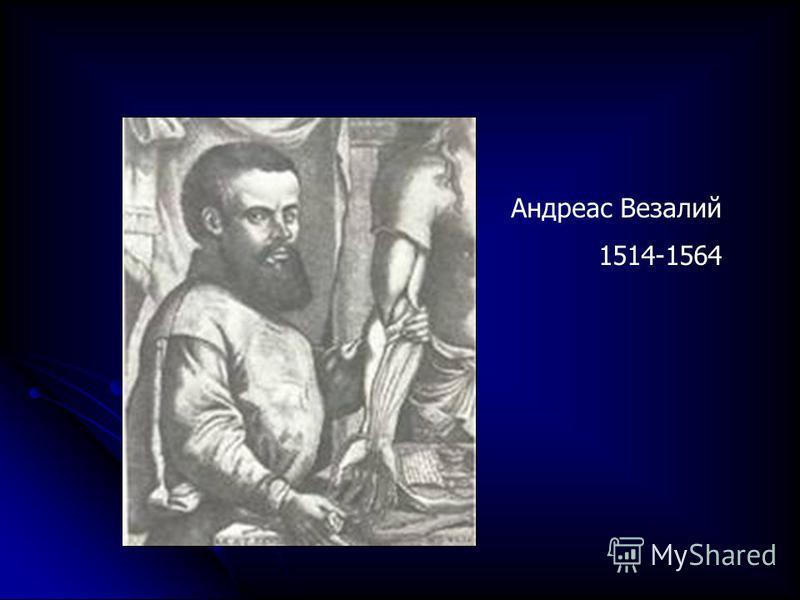 Андреас Везалий 1514-1564