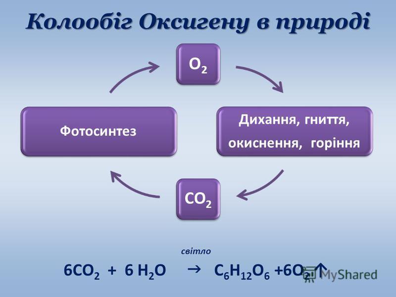 Колообіг Оксигену в природі світло 6СО 2 + 6 Н 2 О С 6 Н 12 О 6 +6О 2 О2 Дихання, гниття, окиснення, горіння СО2 Фотосинтез