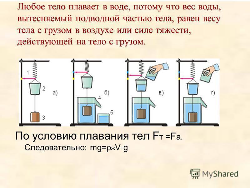 Любое тело плавает в воде, потому что вес воды, вытесняемый подводной частью тела, равен весу тела с грузом в воздухе или силе тяжести, действующей на тело с грузом. По условию плавания тел F т = F а. Следовательно: mg=ρ ж V т g
