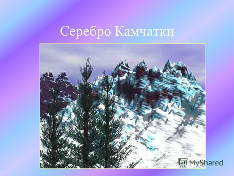 Серебро Камчатки