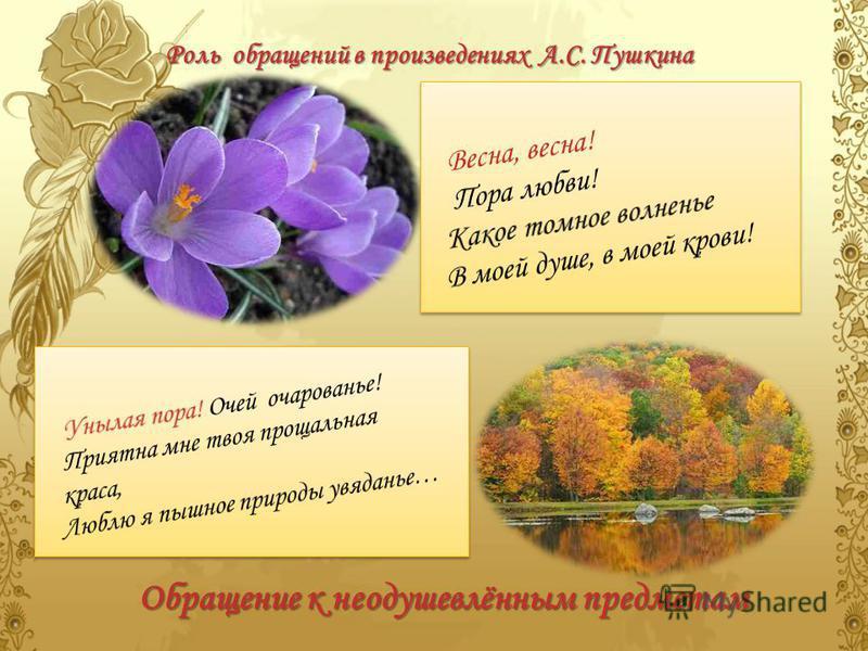 Роль обращений в произведениях А.С. Пушкина Обращение к неодушевлённым предметам