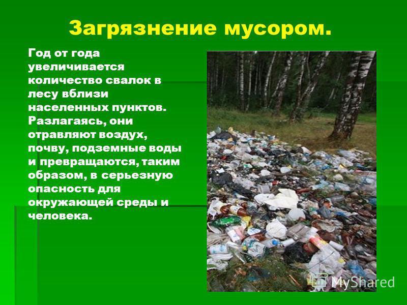 Год от года увеличивается количество свалок в лесу вблизи населенных пунктов. Разлагаясь, они отравляют воздух, почву, подземные воды и превращаются, таким образом, в серьезную опасность для окружающей среды и человека. Загрязнение мусором.
