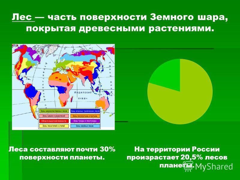 На территории России произрастает 20,5% лесов планеты. Лес часть поверхности Земного шара, покрытая древесными растениями. Леса составляют почти 30% поверхности планеты.