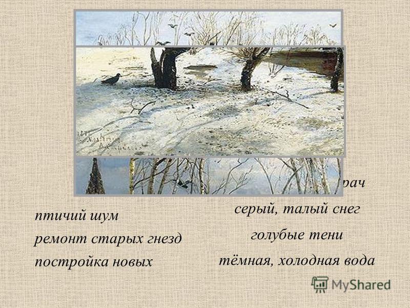 трудолюбивый грач серый, талый снег голубые тени тёмная, холодная вода птичий шум ремонт старых гнезд постройка новых