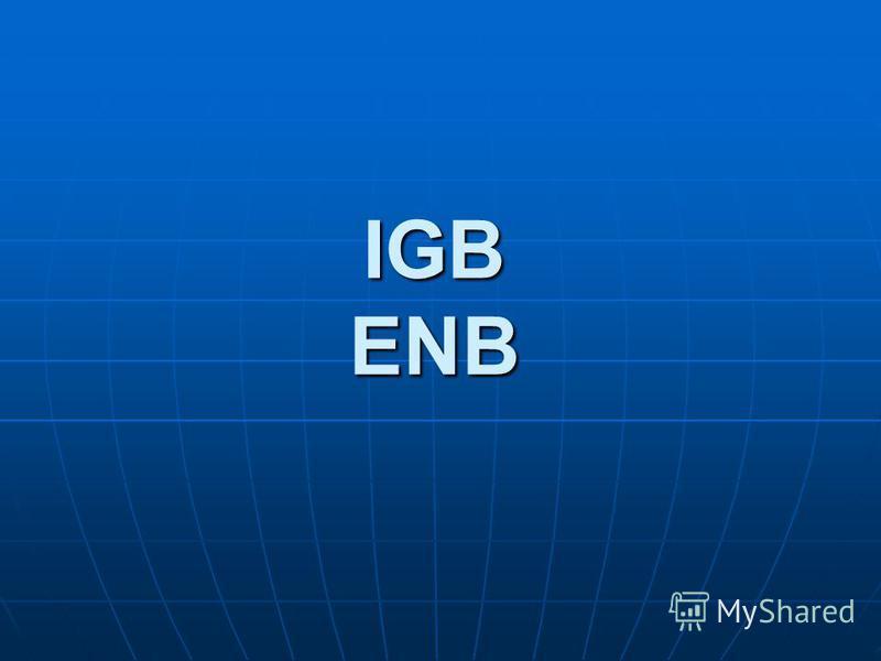 IGB ENB