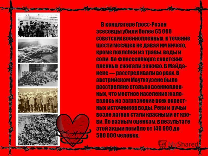 В концлагере Гросс-Розен эсесовцы убили более 65 000 советских военнопленных, в течение шести месяцев не давая им ничего, кроме похлебки из травы, воды и соли. Во Флоссенбюрге советских пленных сжигали заживо. В Майда- неке расстреливали во рвах. В а