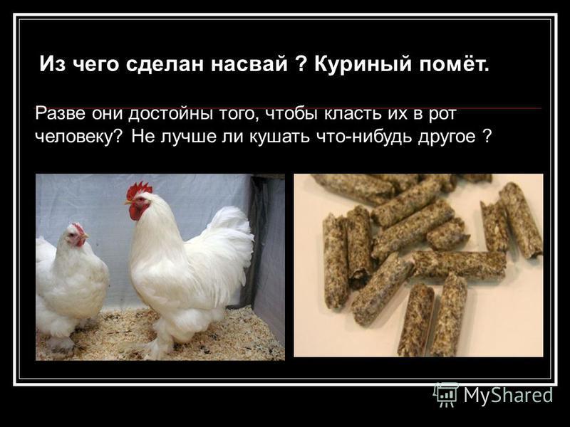 Из чего сделан насвай ? Куриный помёт. Разве они достойны того, чтобы класть их в рот человеку? Не лучше ли кушать что-нибудь другое ?
