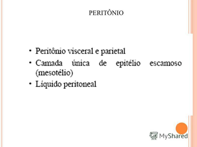 PERITÔNIO