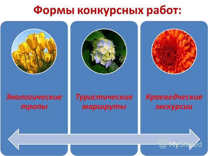 Формы конкурсных работ: Экологические тропы Туристические маршруты Краеведческие экскурсии