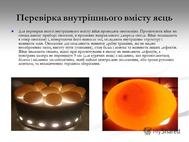 Перевірка внутрішнього вмісту яєць Для перевірки якості внутрішнього вмісту яйця проводять овоскопію. Просвічують яйце на спеціальному приборі овоскопі, в променях направленого джерела світла. Яйце поміщають в отвір овоскопу і, повертаючи його навкол