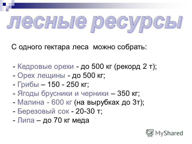 С одного гектара леса можно собрать: - Кедровые орехи - до 500 кг (рекорд 2 т); - Орех лещины - до 500 кг; - Грибы – 150 - 250 кг; - Ягоды брусники и черники – 350 кг; - Малина - 600 кг (на вырубках до 3 т); - Березовый сок - 20-30 т; - Липа – до 70