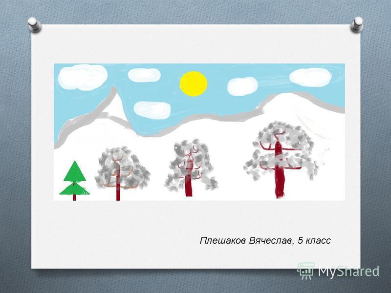 Плешаков Вячеслав, 5 класс