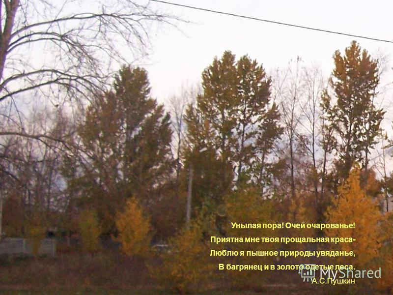 Иллюстрации к стихотворениям об осени. Подготовил коллектив 5 а класса Руководитель Гайнуллина А.Ш.