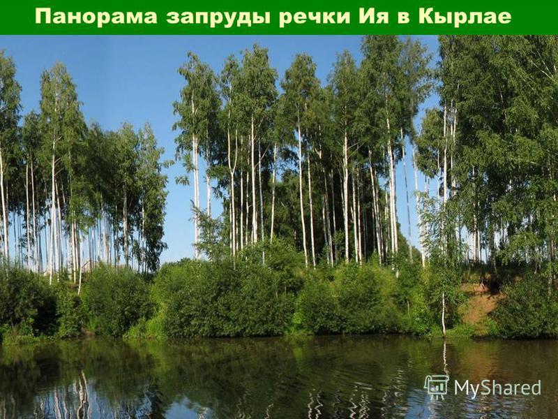 Панорама запруды речки Ия в Кырлае