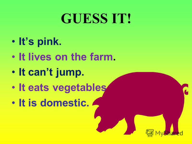 GUESS IT! Its pink. It lives on the farm. It cant jump. It eats vegetables. It is domestic.