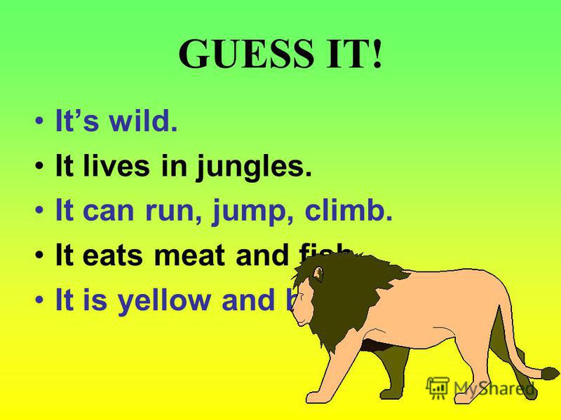 GUESS IT! Its wild. It lives in jungles. It can run, jump, climb. It eats meat and fish. It is yellow and brown.
