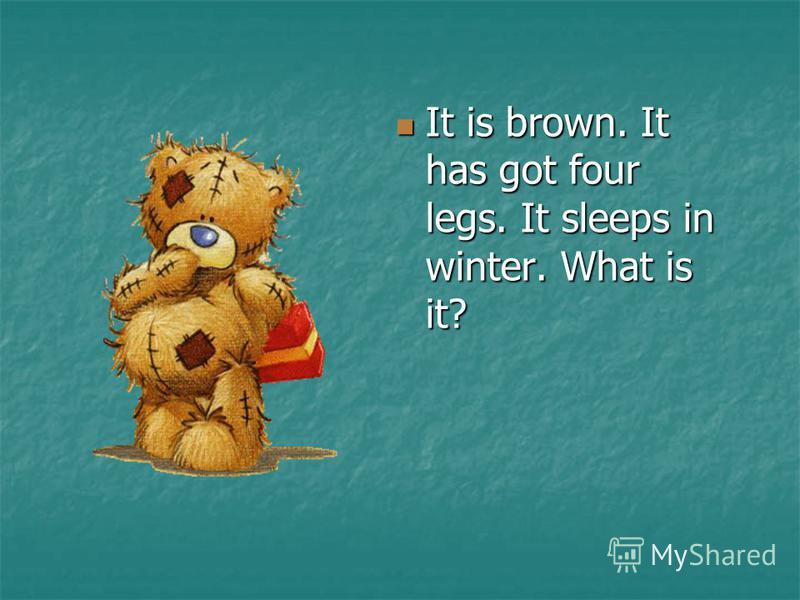 It is brown. It has got four legs. It sleeps in winter. What is it? It is brown. It has got four legs. It sleeps in winter. What is it?