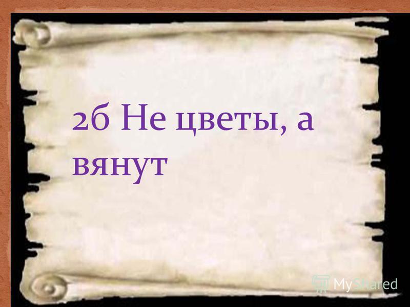 2 б Не цветы, а вянут