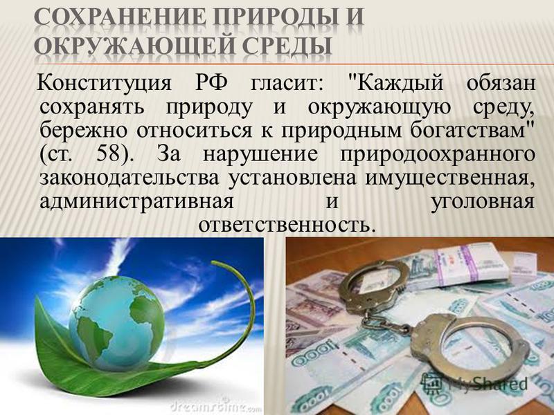 Конституция РФ гласит: Каждый обязан сохранять природу и окружающую среду, бережно относиться к природным богатствам (ст. 58). За нарушение природоохранного законодательства установлена имущественная, административная и уголовная ответственность.
