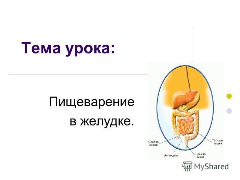 Тема урока: Пищеварение в желудке.
