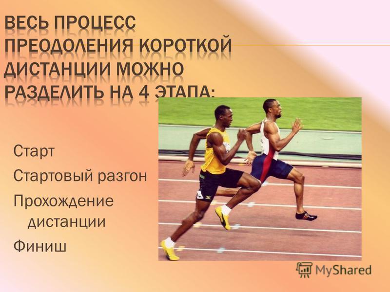 Старт Стартовый разгон Прохождение дистанции Финиш