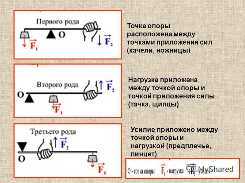 Точка опоры расположена между точками приложения сил (качели, ножницы) Нагрузка приложена между точкой опоры и точкой приложения силы (тачка, щипцы) Усилие приложено между точкой опоры и нагрузкой (предплечье, пинцет)