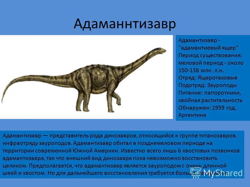 Тиранозавр Время обитания: конец мелового периода 65 миллионов лет назад Длина: 13 м Высота: 4 м Вес: 7 т Тип: хищник Тиранозавр - пожалуй самый знаменитый из всех хищных динозавров. Тираннозавра часто можно увидеть на эмблемах, в фантастических филь