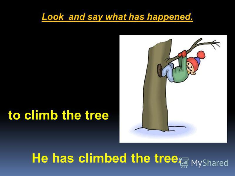 Look and say what has happened. He has climbed the tree. to climb the tree