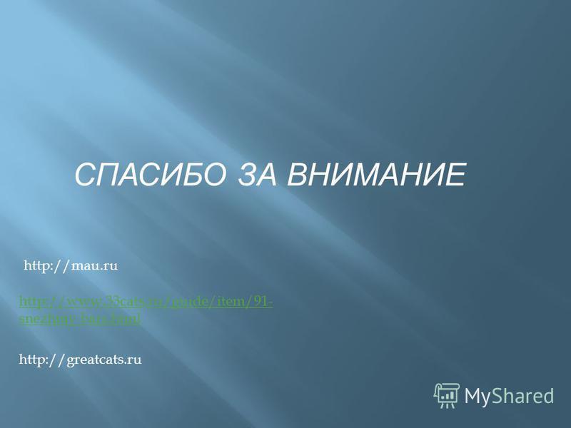 http://www.33cats.ru/guide/item/91- snezhniy-bars.html http://greatcats.ru http://mau.ru СПАСИБО ЗА ВНИМАНИЕ