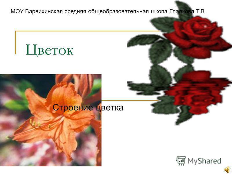 Цветок Строение цветка МОУ Барвихинская средняя общеобразовательная школа Гладкова Т.В.