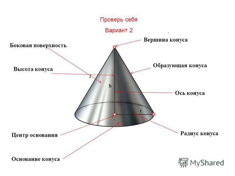 Проверь себя Вариант 2 Основание конуса Боковая поверхность Вершина конуса Радиус конуса Центр основания Высота конуса Образующая конуса Ось конуса