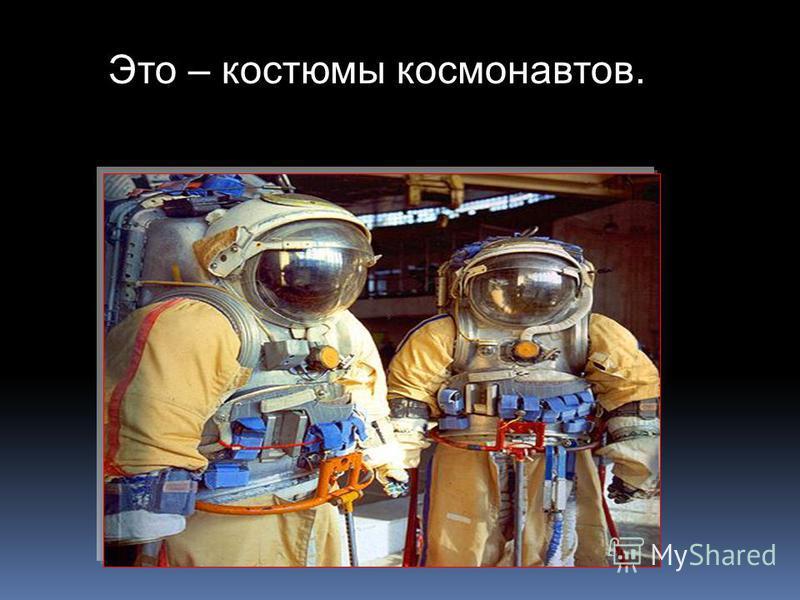 собачьи домики в них летали четвероногие космонавты Белка и Стрелка