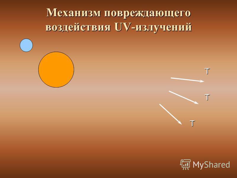 Механизм повреждающего воздействия UV-излучений Т Т Т