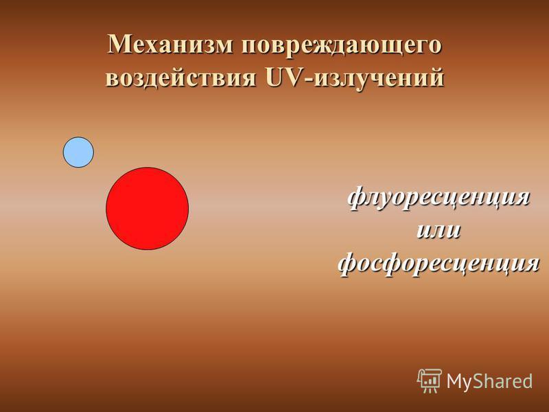 флуоресценцияилифосфоресценция