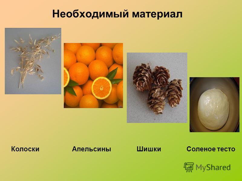 Необходимый материал Колоски Апельсины Шишки Соленое тесто