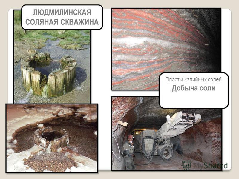 ЛЮДМИЛИНСКАЯ СОЛЯНАЯ СКВАЖИНА Пласты калийных солей Добыча соли