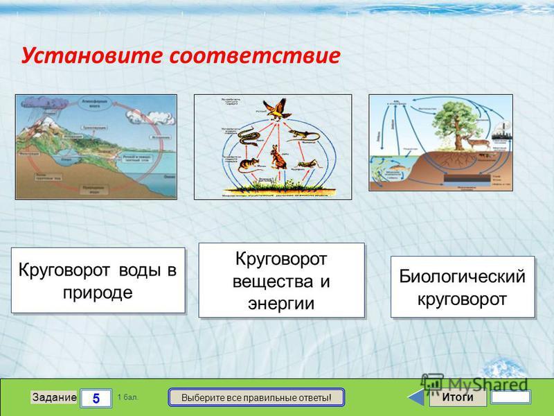 Итоги 5 Задание 1 бал. Выберите все правильные ответы! Круговорот воды в природе Круговорот воды в природе Круговорот вещества и энергии Круговорот вещества и энергии Биологический круговорот Биологический круговорот Установите соответствие