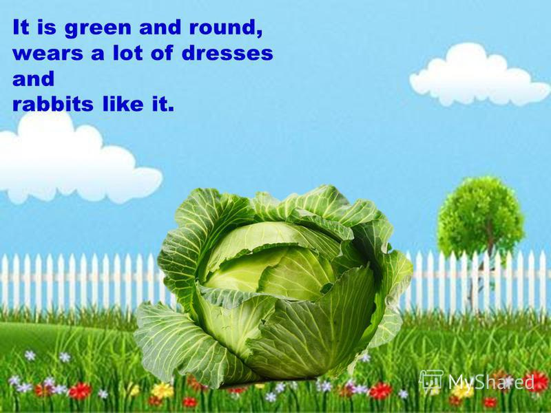 It is green and round, wears a lot of dresses and rabbits like it.