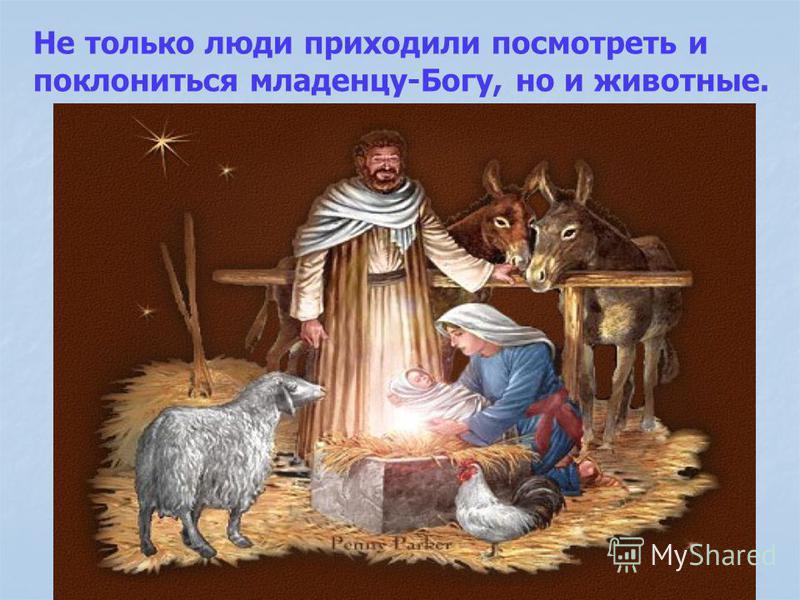 Не только люди приходили посмотреть и поклониться младенцу-Богу, но и животные.