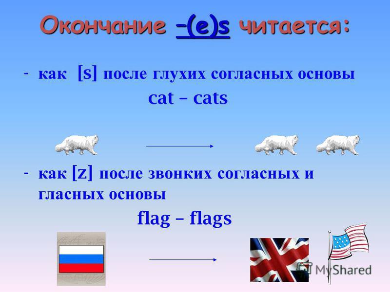 Окончание –(e)s читается: - как [s] после глухих согласных основы cat – cats - как [z] после звонких согласных и гласных основы flag – flags