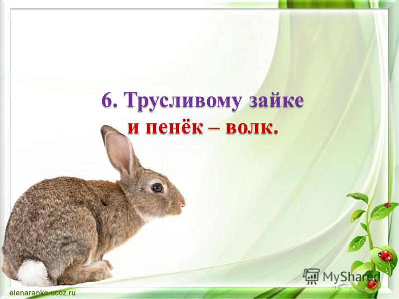 5. Как волка не корми, он все в лес смотрит.