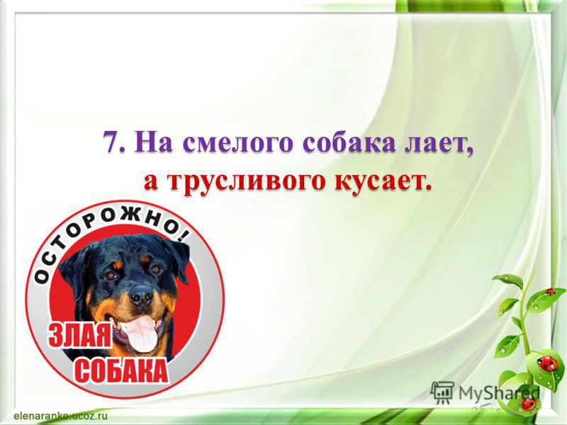 6. Трусливому зайке и пенёк – волк.