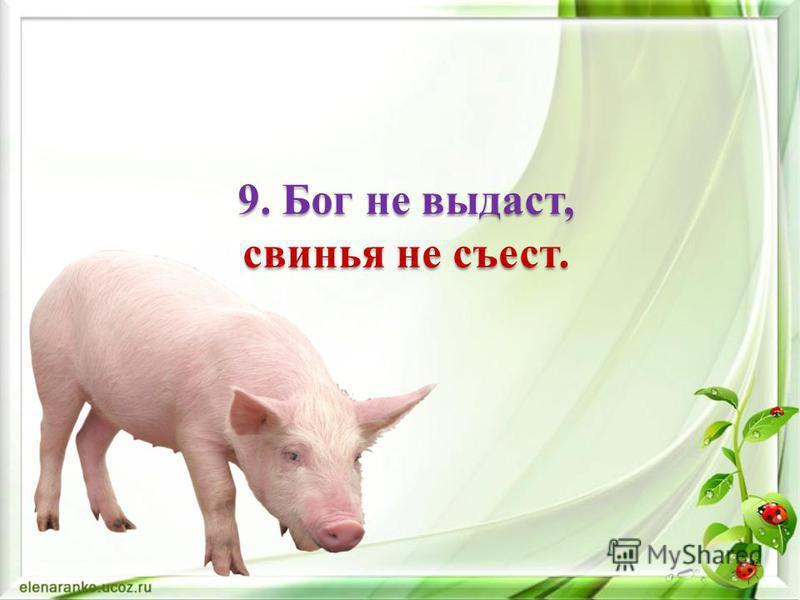 8. И волки сыты, и овцы целы.