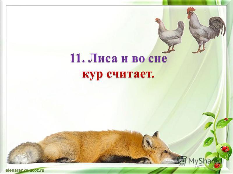 10. Птице - крылья, а человеку - разум.
