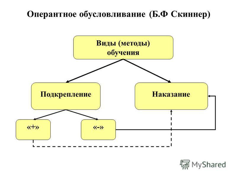 Оперантное обусловливание (Б.Ф Скиннер) «+» Виды (методы) обучения Подкрепление Наказание «-»