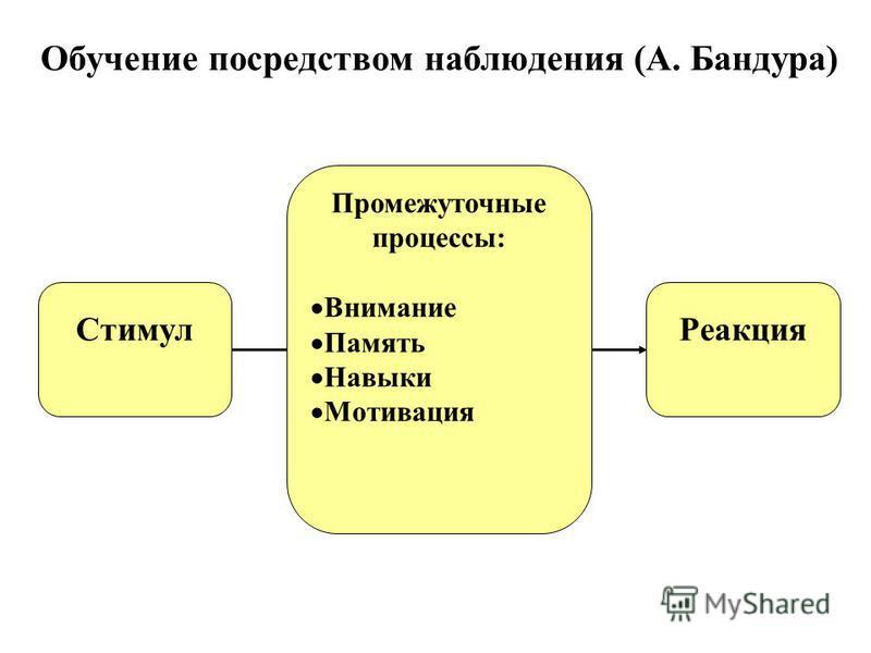 Обучение посредством наблюдения (А. Бандура) Стимул Реакция Промежуточные процессы: Внимание Память Навыки Мотивация