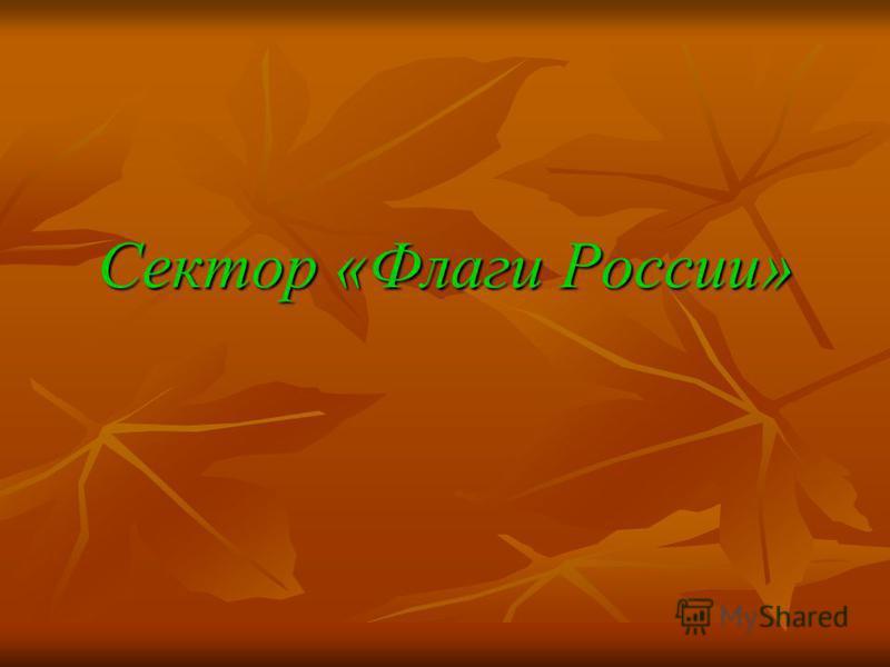 Сектор «Флаги России»